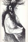 ilustrace (J. Liesler)