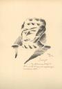 ilustrace (V. Hofman)