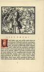 s. 7 ilustrace (T. F. Šimon)